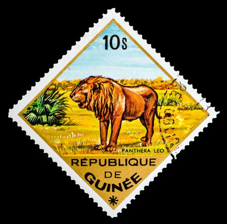 REPUBLIQUE DE GUINEE - CIRCA 1976: A stamp printed in Republique de Guinee shows Pantera Leo, Lion, series animals, circa 1976