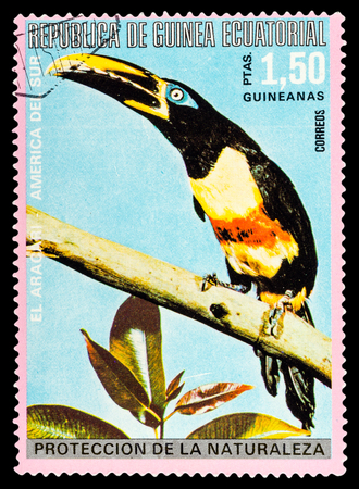 guinee: REPUBLIQUE DE GUINEE - CIRCA 1972: A stamp printed in Republique de Guinee shows wild birds, series animals, circa 1972