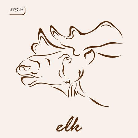 bellow: Vector illustration. Illustration shows a elk