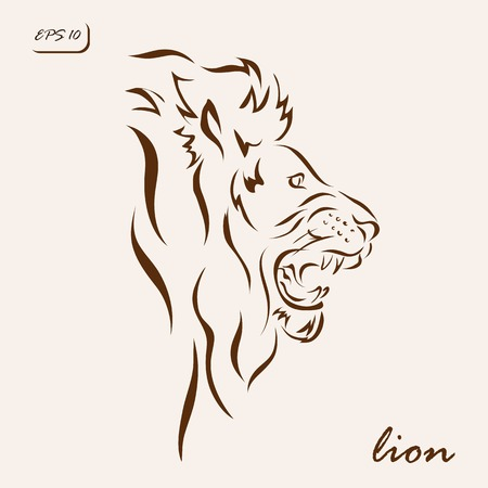 Vector illustration. Illustration shows a lion