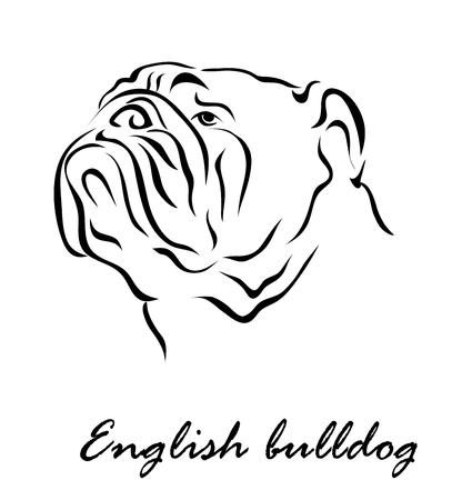 Ilustración del vector. La ilustración muestra un perro de raza Bulldog Inglés Ilustración de vector