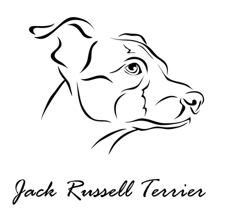 Vector illustration. Illustration shows a dog breed Jack Russell Terrier