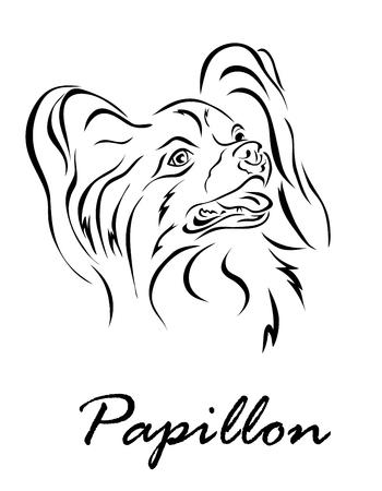 Vector illustration. Illustration shows a dog breed Papillon