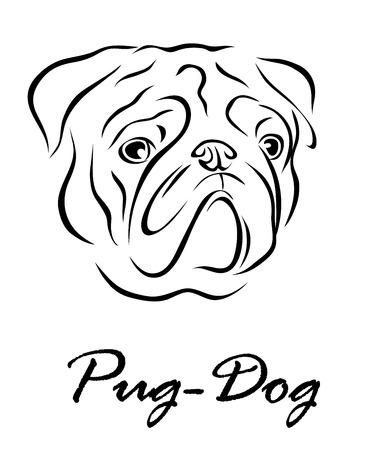 Illustrazione vettoriale. L'illustrazione mostra un cane di razza Pug Dog