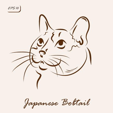 bobtail vector illustration illustration shows a cat breed japanese bobtail illustration