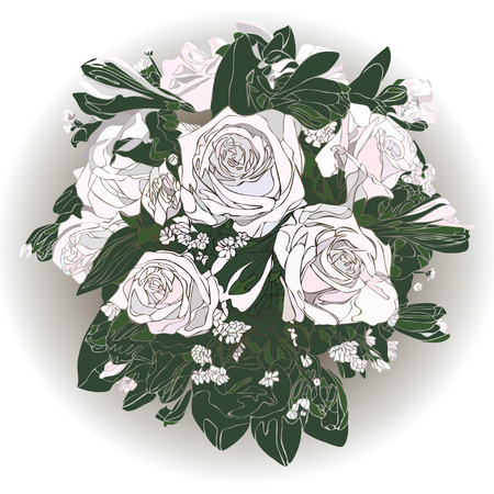 Greeting card with white rose. Illustration rose.