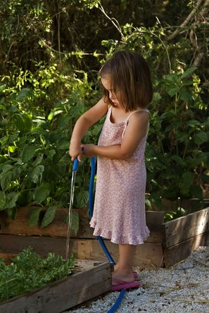 Young girl watering the vegtable garden with a hose Stock Photo
