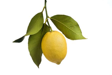 Lemon with leaves isolated on white Stock Photo - 2539728