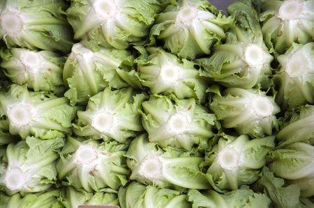 stack of roman lettuce in the market Stock Photo - 3002828