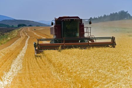 red combine working in a wheat field Stock Photo - 3040411