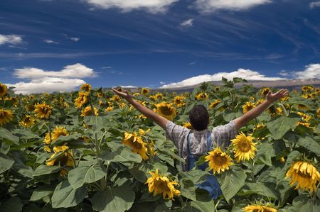 farmer standing in a sunflower field with his arms spread out photo