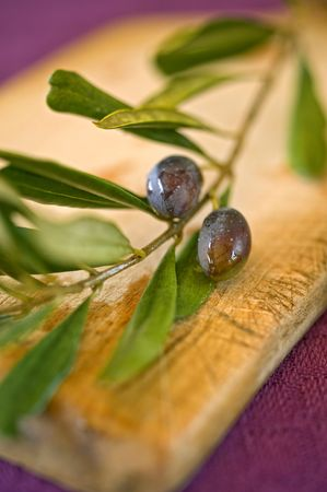 close up on black olives on branch Stock Photo - 3593737