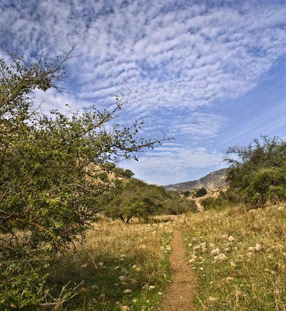 vadi: lonley path in a valley in vadi nachal amud, Galilee Isreal Stock Photo