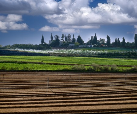 a village seen from agriculture fields Stock Photo - 3958511