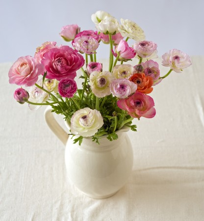 bouquet of buttercup flowers in a ceramic pitcher