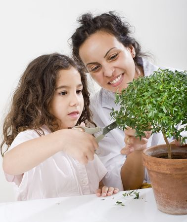 horticulturist: teacher pupil  and small poted tree