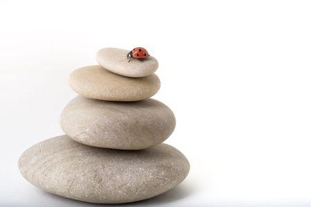 ladybug on pile of stones isolated on white