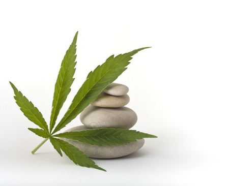 marijuana leaf leaning on a pile of stones isolated on white photo