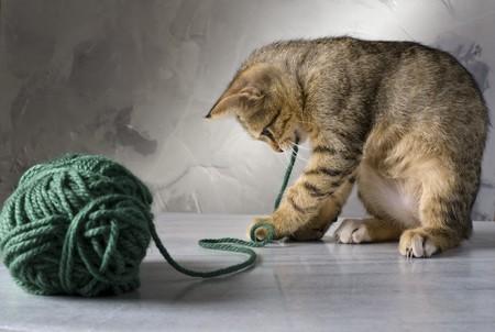 gomitoli di lana: gattino giocare con una palla di lana verde su sfondo grigio e superficie marmo  Archivio Fotografico