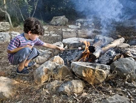 boy having marshmallow at the campfire