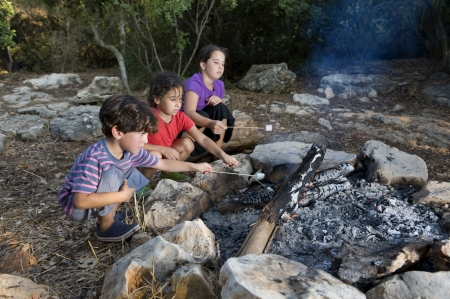 bonfire night: Three kids roasting marshmallows at a campfire