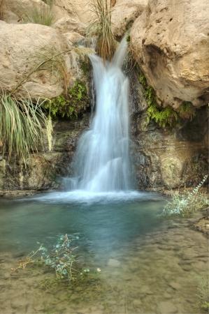 Kleiner Wasserfall in der Wüste in Nachal David in der Nähe Ein Gedi, Israel Standard-Bild - 8357497
