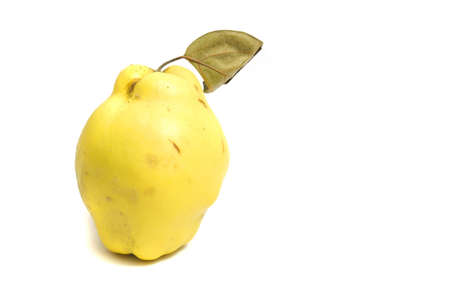 close up on a fresh scented quince, isolated on white