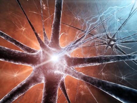 neurons: Neural network , detailed illustration Stock Photo