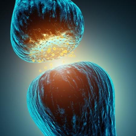 zenuwcel: Synaptische transmissie, 3d illustratie Stockfoto