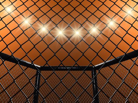 Fight cage , 3d illustration
