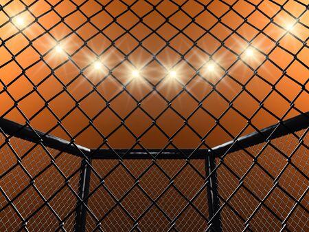 mixed martial arts: Jaula de lucha, ilustraci�n 3d Foto de archivo