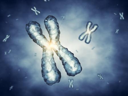 Les chromosomes, le génie génétique Banque d'images