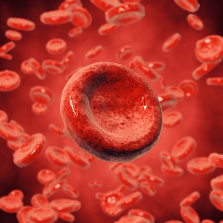 Red blood cells , 3d illustration illustration