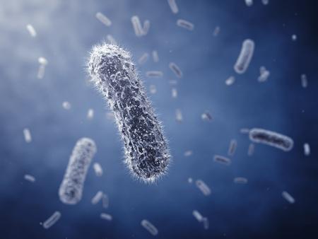 Bactéries de forme allongée, illustration détaillée