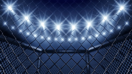 fight arena: MMA cage and floodlights Stock Photo
