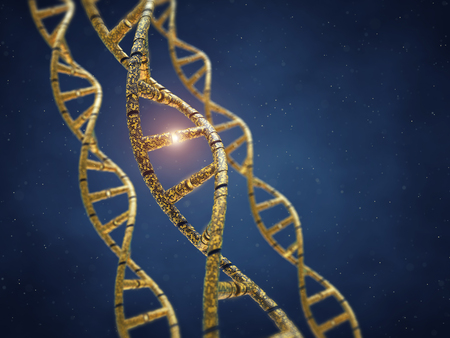 genetic research: Genetically modified DNA molecules