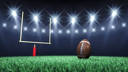 football kick: Green football field, ball, goal post and floodlights