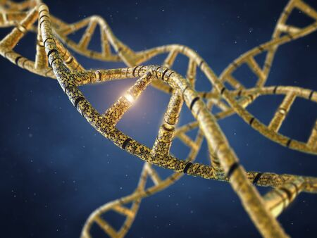 nucleotide: Genetically modified DNA molecules  GMO  Genetics Stock Photo