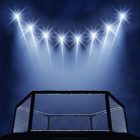 fighting: jaula y reflectores MMA, MMA lucha Arena Foto de archivo