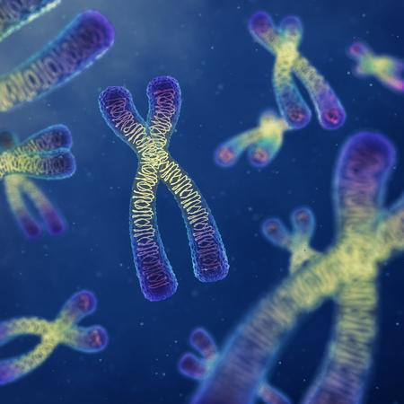 genetic: Chromosomes , genetic engineering , DNA