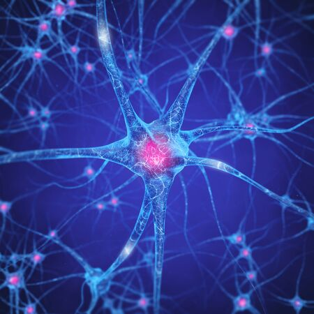 zellen: Neuronales Netz, Gehirnzellen, Menschliches Nervensystem, Neurons Lizenzfreie Bilder