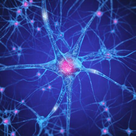 Réseau de neurones, les cellules du cerveau, du système nerveux humain, Neurones Banque d'images