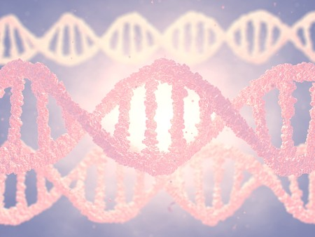 double helix: Dna double helix molecules , Genetic engineering