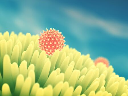 reproduction: Pollen grains on flower , Hay fever , Pollen allergy