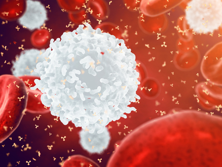 bloodcell: White , red blood cells and antibodies , Leukocytes , Infectious disease , Immune system Stock Photo