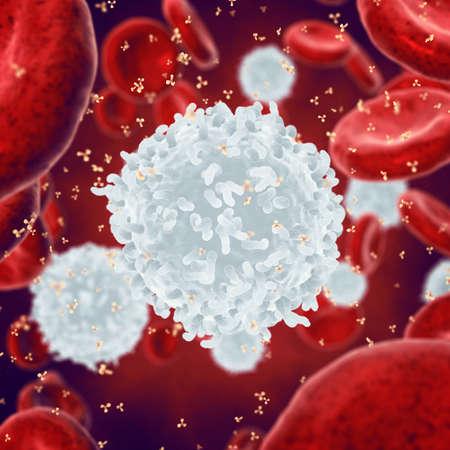 globulos blancos: , glóbulos rojos blancos y anticuerpos, leucocitos, enfermedad infecciosa, Sistema inmunitario