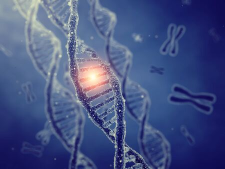 mutation: Dna double helix molecules and chromosomes , Gene mutation , Genetic code Stock Photo