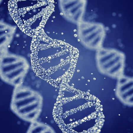 mutation: Dna helix , Gene mutation , Genetics