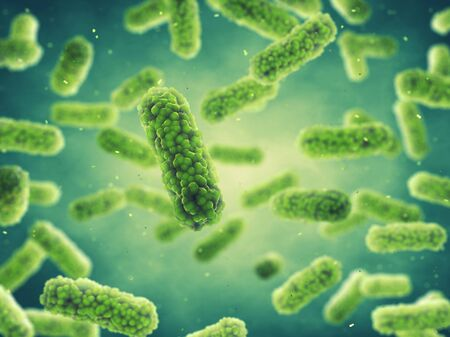 bacteriology: Bacteria , Germ infection , Epidemic bacterial disease
