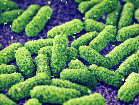 Bacteria , Germ infection and Pandemic disease